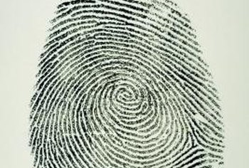 Fingerprint analysts can be key in finding criminals.