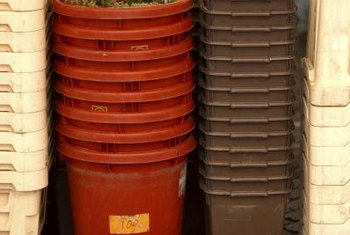 Transform a plastic bin with cover into a productive garden.