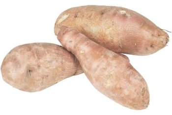Sweet potatoes need soil once they begin to sprout.