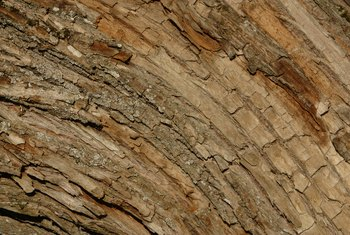 The hygroscopic nature of wood can be exploited to force it to expand.