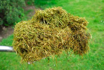 How to Handle a Large Quantity of Grass Clippings