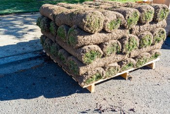 How Much Will One Pallet of Sod Cover?