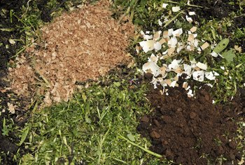Fertilizing Plants With Coffee Grounds and Eggshells