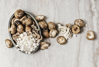 Nutrients of Canned Mushrooms