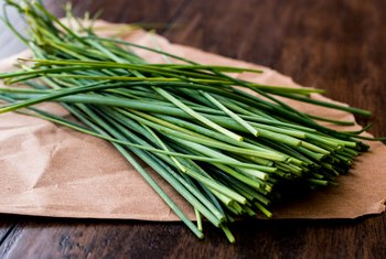 How to Trim Chives