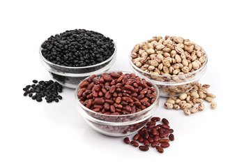 List of Legume Foods