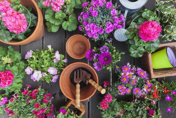How to Make Holes in Flower Pots for Water to Run Out