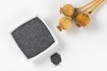 What Are the Benefits of Poppy Seeds?