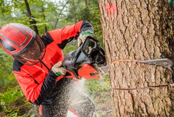 What Is the Gas to Oil Mixture Ratio for Chain Saws?