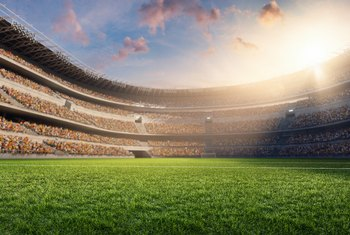 Professional Stadium Groundskeeper Pay