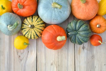 Squash vs. Cruciferous Vegetables
