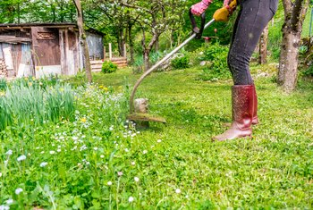 How to Price Lawn Cutting