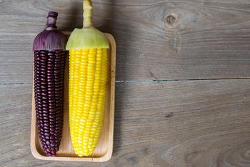 How to Care for a Corn Plant That Is Browning