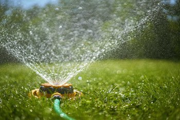 How Long Do I Water Grass Using an Oscillating Sprinkler?