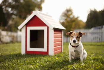 How to Insulate My Doghouse
