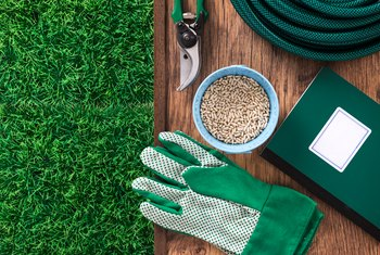 When To Lime The Lawn If New Grass Seed Is Planted Home Guides Sf Gate