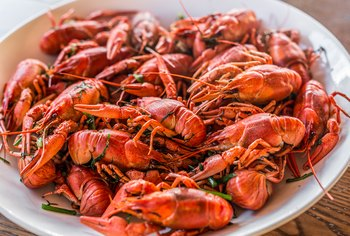 How Nutritious Is Crawfish?