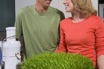 Caring for your wheatgrass is a simple process.