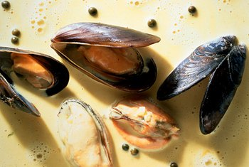 Mussels have darker shells compared to steamers.