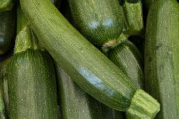 Don't let zucchini grow too big. Pick it when it's about 6 inches long.
