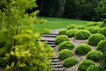 Landscape timber steps soften an existing slope in your garden.