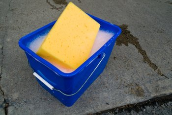 Sponges are common household products that absorb moisture.