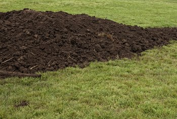 The Best Ways to Spread Topsoil