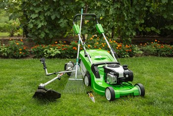 When Should You Power Rake a Lawn?
