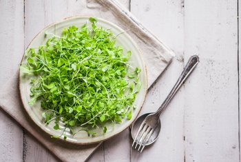 What Are the Health Benefits of Microgreens?