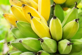 When to Cut the Flower From a Banana Plant