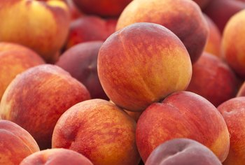 How to Prevent the Jelly-Like Goo on a Peach Tree