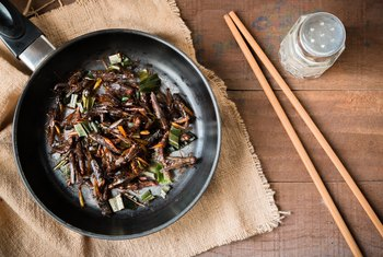 The Nutrition Values of Edible Bugs & Insects