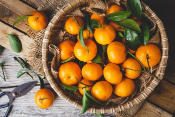 Can Eating Oranges Make You Fat?