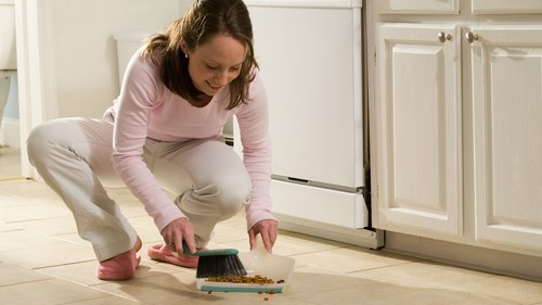 <p>Keep your home clean to avoid unwanted pests.</p>