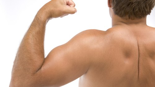 <p>Including biceps during a workout promotes increases in strength and muscle size.</p>