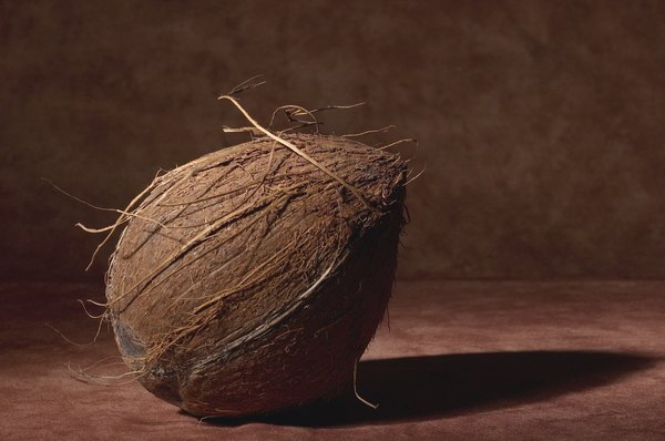 Coconut husk fiber refers to the inedible fibers on the outer shell of the coconut.