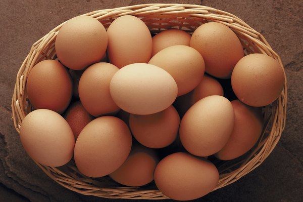 Organic and traditional eggs contain the same amount of protein.