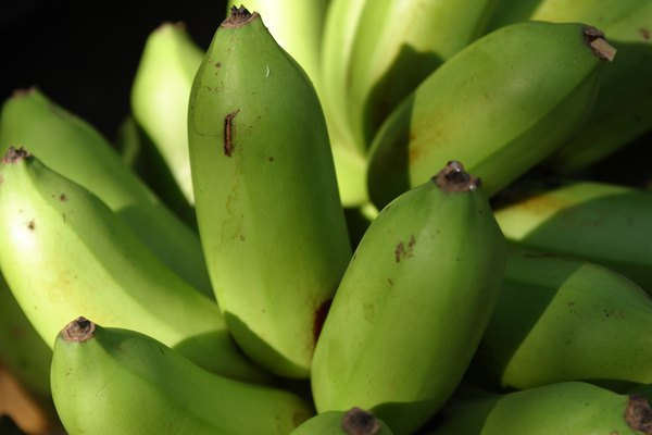 Green plantains are high in potassium.
