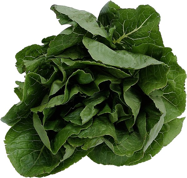 Potatoes contain more potassium than spinach.