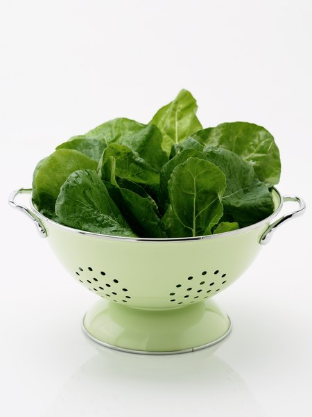 Green lettuce does not contain a large amount of sugar.