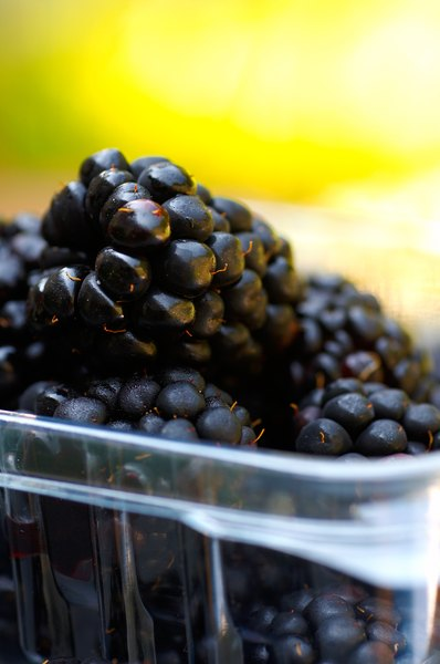 Black raspberries are superior sources of phytochemicals.