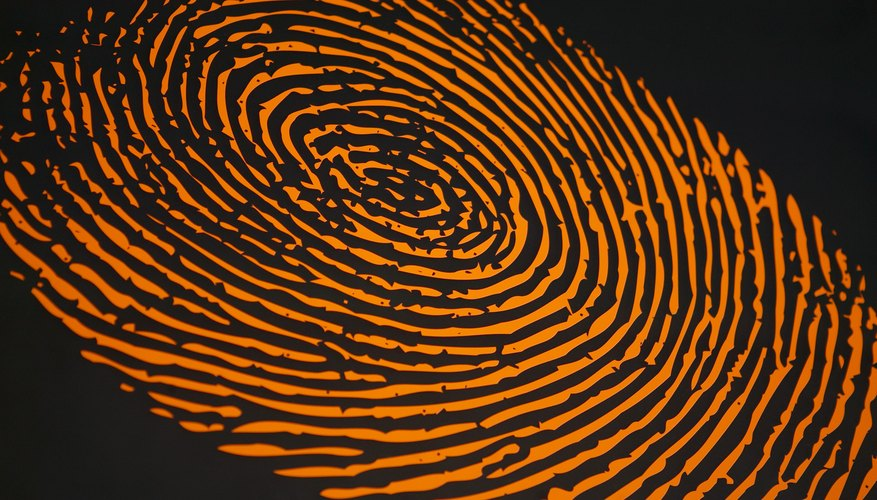 What Are The Duties Of A Forensic Specialist Work Chron Com