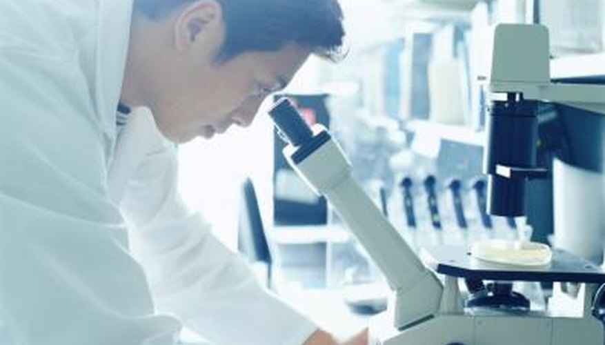 Advantages Disadvantages Of Working As A Forensic Chemist Work Chron Com